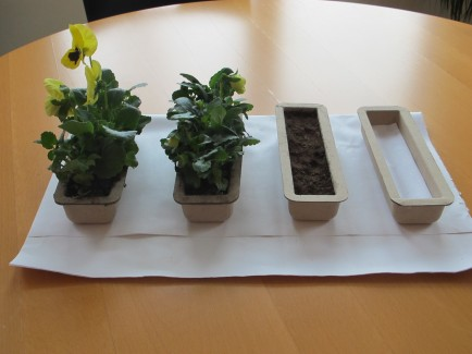 Ipad packaging planter