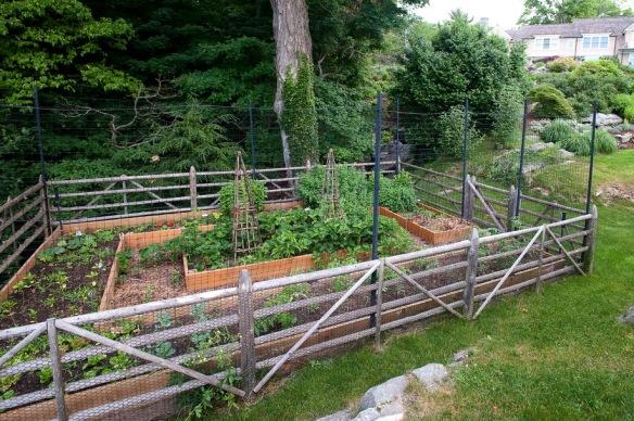 A cook's garden