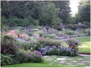 Perennial garden mixture of shrubs, roses and bulbs.